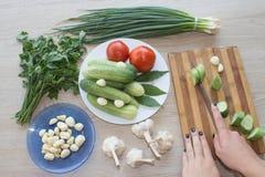 Giovane donna che cucina pasto sano nella cucina Cottura sana Fotografia Stock