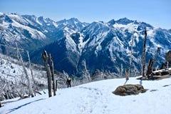 Giovane donna che fa un'escursione in montagne immagine stock