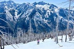 Giovane donna che fa un'escursione in montagne fotografie stock