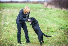 Giovane donna che gioca con il cane Fotografia Stock