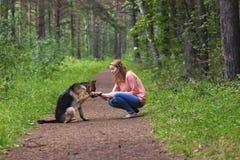 Giovane donna che gioca con il pastore tedesco Fotografia Stock
