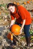 Giovane donna che lavora al giacimento della zucca Immagine Stock Libera da Diritti