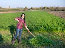 Giovane donna che lavora nel campo Fotografie Stock