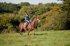 Giovane donna che monta un cavallo nel campo aperto Immagini Stock Libere da Diritti