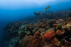 Giovane donna che naviga usando una presa d'aria fotografia stock libera da diritti