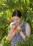 Giovane donna che odora le pesche fresche Fotografia Stock Libera da Diritti