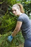 Giovane donna che raccoglie erba in giardino Fotografia Stock