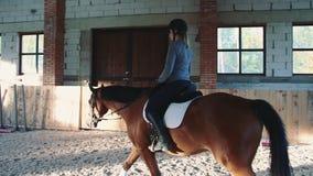 Giovane donna che si siede a cavallo e che guida sull'arena sabbiosa coperta che ha pratica archivi video