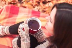 Giovane donna che si siede su una coperta e su un tè bevente Fotografia Stock Libera da Diritti