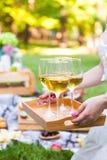 Giovane donna che tiene un piatto con il vino bianco di vetro alla somma di picnic fotografia stock libera da diritti