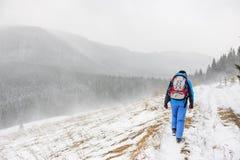 Giovane donna che viaggia in montagne di inverno immagini stock