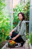 Giovane donna con il canestro di pianta e delle verdure nella serra Tempo di raccogliere Fotografia Stock Libera da Diritti