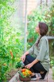 Giovane donna con il canestro di pianta e delle verdure nella serra Tempo di raccolta Fotografia Stock