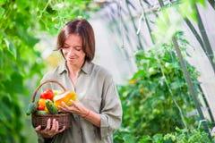 Giovane donna con il canestro pieno delle verdure nella serra Tempo di raccogliere Fotografia Stock Libera da Diritti