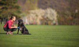 Giovane donna con il suo cane nero all'aperto, in un parco che gioca frisbee immagini stock libere da diritti