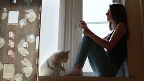 Giovane donna con la compressa ed il gatto sul finestra-davanzale video d archivio