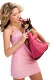 Giovane donna con un piccolo cane Fotografia Stock