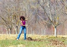 Giovane donna con un rastrello in un frutteto Immagini Stock Libere da Diritti