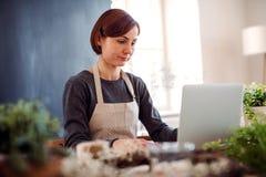 Giovane donna creativa in un negozio di fiore, facendo uso del computer portatile Una partenza dell'affare del fiorista immagine stock libera da diritti