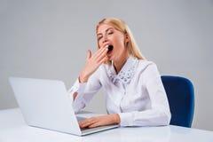 Giovane donna di affari che lavora al computer portatile Immagini Stock