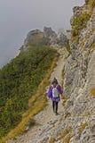 Giovane donna di alpinismo, paesaggio alpino nebbioso Fotografia Stock