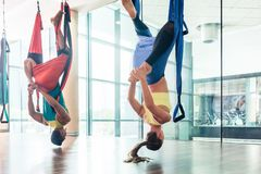 Giovane donna di misura che pratica yoga aerea in un club di forma fisica moderno immagine stock libera da diritti