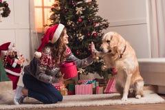 Giovane donna e cane a christmastime fotografie stock libere da diritti
