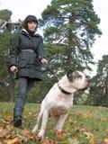 Giovane donna e forte cane fotografia stock