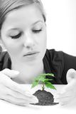 Giovane donna e germoglio verde Immagine Stock