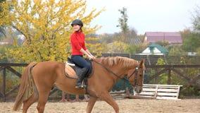 Giovane donna felice che monta un cavallo fotografie stock