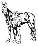 Giovane donna fiera che tiene il suo cavallo Immagine Stock