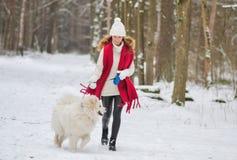 Giovane donna graziosa nell'inverno Forest Park Walking Playing di Snowy con il suo cane fotografia stock