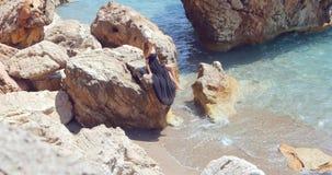 Giovane donna graziosa in vestito elegante dal ritaglio nero che si siede vicino al mare video d archivio