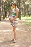 Giovane donna incinta Fotografia Stock Libera da Diritti