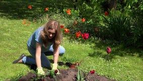 Giovane donna incinta che pianta i fiori in giardino video d archivio
