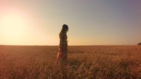 Giovane donna nel campo di frumento archivi video