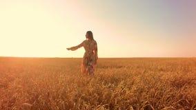 Giovane donna nel campo di frumento stock footage