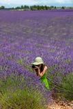 Giovane donna nel giacimento della lavanda che fotografa in Provenza, Francia. Fotografia Stock
