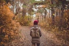 Giovane donna nell'abbigliamento casual che sta nella foresta di autunno Fotografia Stock