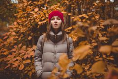 Giovane donna nell'abbigliamento casual che sta nella foresta di autunno Fotografia Stock Libera da Diritti