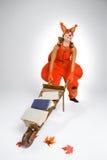 Giovane donna nell'immagine dello scoiattolo con il carretto ed i libri Fotografia Stock Libera da Diritti