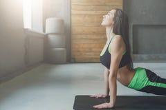 Giovane donna nella classe di yoga, asana di posa del cane Fotografia Stock Libera da Diritti