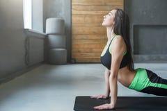 Giovane donna nella classe di yoga, asana di posa del cane Fotografie Stock Libere da Diritti