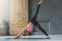 Giovane donna nella classe di yoga, posa del cane Immagine Stock Libera da Diritti