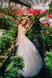 Giovane donna nella condizione lussuosa del vestito nel giardino fiorito fotografia stock libera da diritti