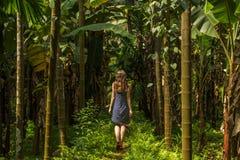 Giovane donna nella giungla nella piantagione tropicale della spezia, Goa, Ind immagini stock