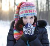 Giovane donna nella sosta di inverno Fotografie Stock Libere da Diritti