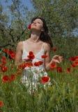 Giovane donna in papaveri Fotografia Stock Libera da Diritti