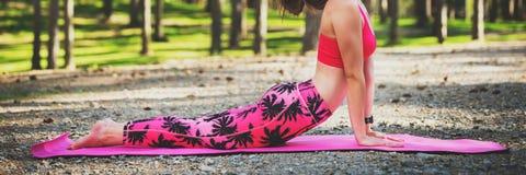 Giovane donna pronta ad yoga di pratica in una posa ascendente del cane del rivestimento della foresta La calma, si rilassa, si o fotografia stock