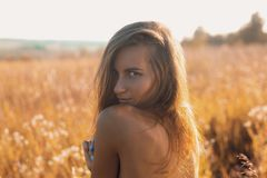 Giovane donna sensuale con la condizione posteriore nuda in un bello campo di estate immagine stock libera da diritti